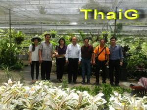 เจ้าหน้าที่กระทรวงเกษตรเวียดนาม ชมการผลิตไม้ตัดใบ
