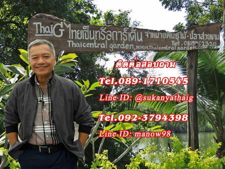 ThaiG ศูนย์ขยายพันธุ์ไม้ สามพราน